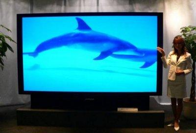 Популярность проекционных телевизоров